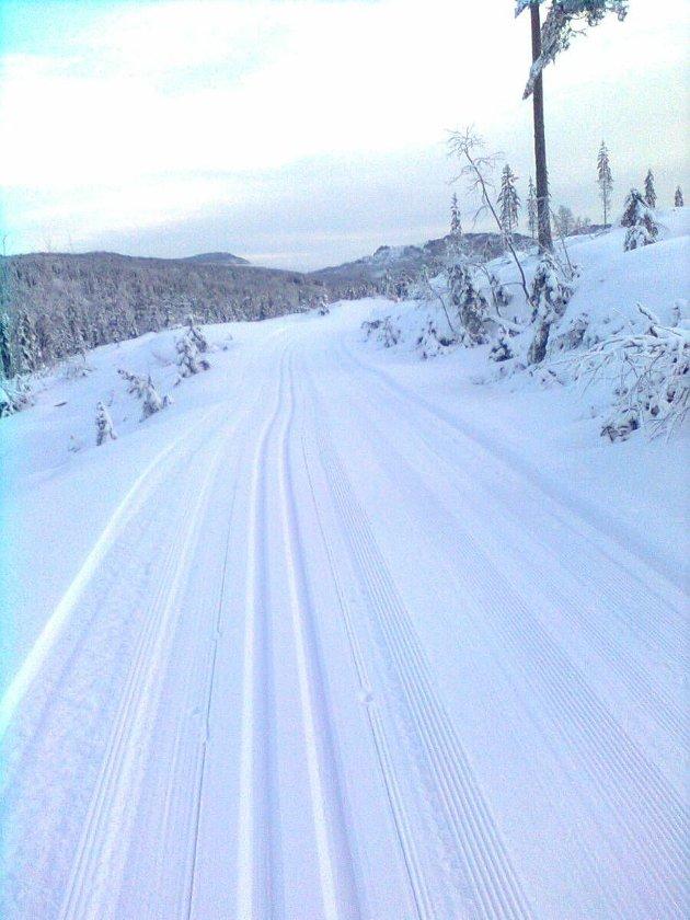Trikkeskinner mellom Engersetra og Nygårdshøgda