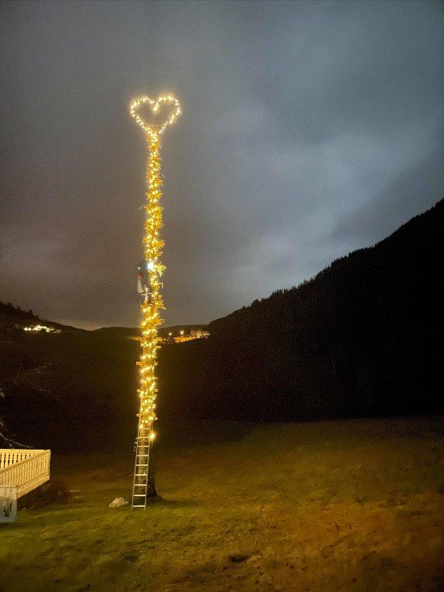 Dette hjartet er hos Kjell Einar Viken i «Lia» på Myrmel. Hjartet er montert i ei 17 meter høg gran som står på tunet.