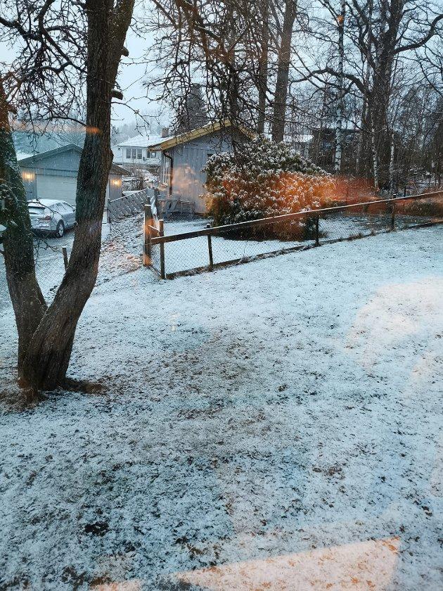 Vinter i Halden. Nedre Glenne.