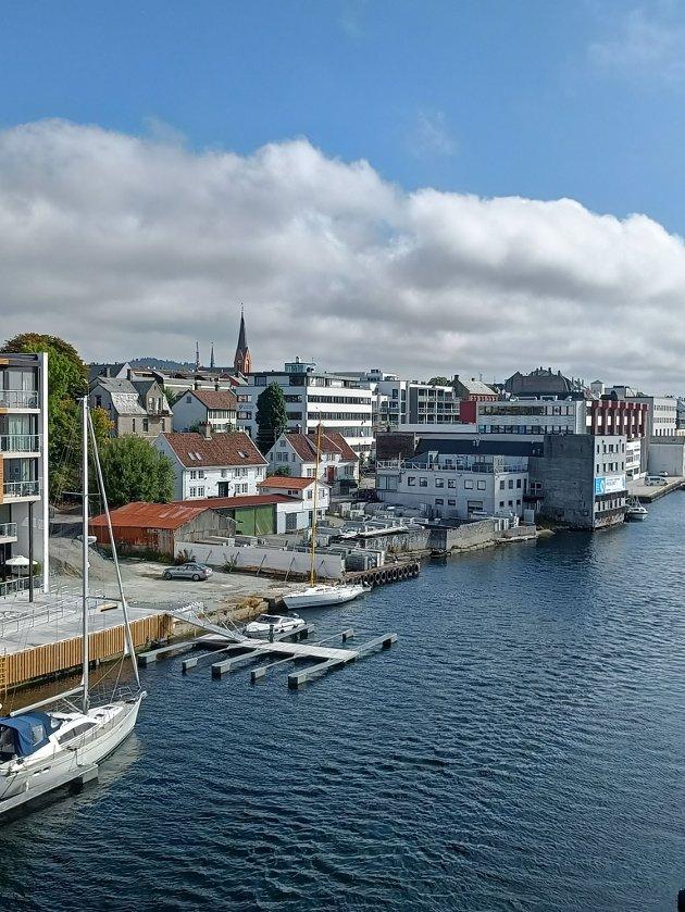 Kronå i Haugesund