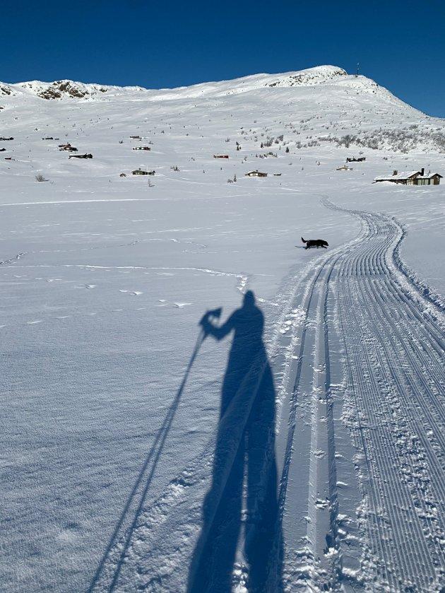 Skitur m Lillegull