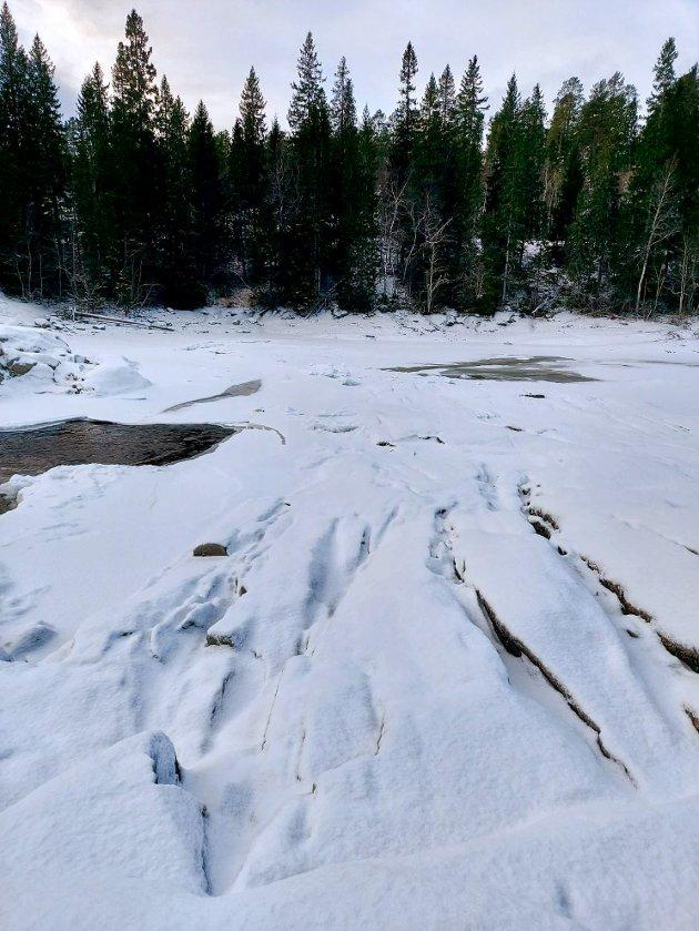 ØDELEGGENDE: Tallene fra mandag 18. januar viser ei vannføring på 0,932 kubikkmeter per sekund ved målestasjonen i Åelva – altså knapt tusen liter i sekundet, mens snittet for perioden 1987–2016 ligger på omtrent 3,2 kubikkmeter per sekund. Den lave vannstanden er ødeleggende for villaksen.