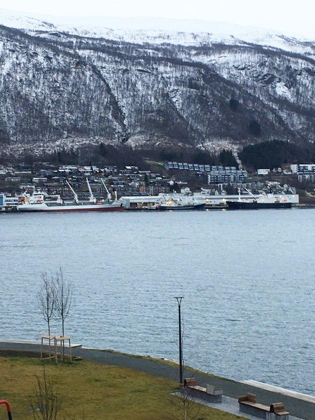 Et tilfeldige bilde fra min veranda viser fem båter inne på Solstrand i Tromsdalen, fire norsk-registrerte og en fra Bahamas, lastet med verdiskapingspotensial for vår kyst, skriver Arild Hausberg.