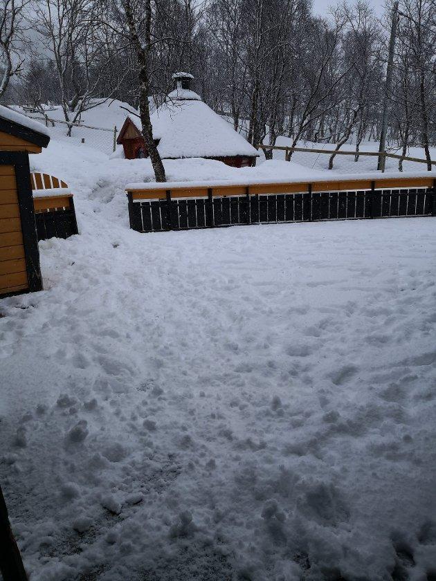 SNØVÆR: Det er ventet snøbyger hele mandag og tirsdag, varsler meteorologen.