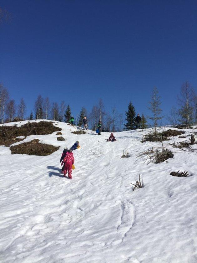 Ifølge førskoleopplegget skulle vi jobbe med «framlyder» i dag. Nei, vi velger skogen! skriver Gina Hustad.