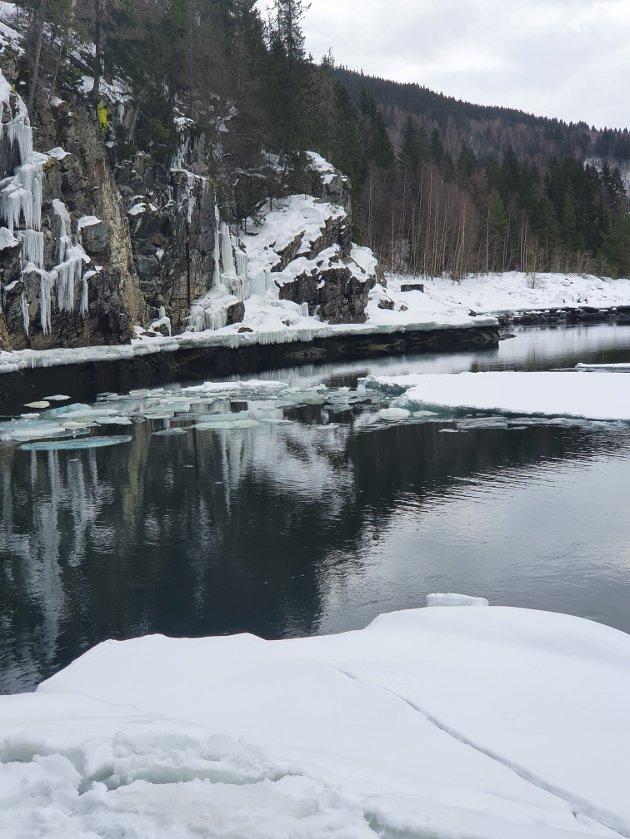 STANS: - Hølsauge i Lågen nå 15. mars. Brått med bulder og brak fra is som falt 1 meter og sus fra rennende vann ble det «fjære» sjø i hølen og videre nedover elva. Årsaken var planlagt driftsstans i Hunderfossen kraftstasjon. Dette kan umulig være bra for livet i elva.