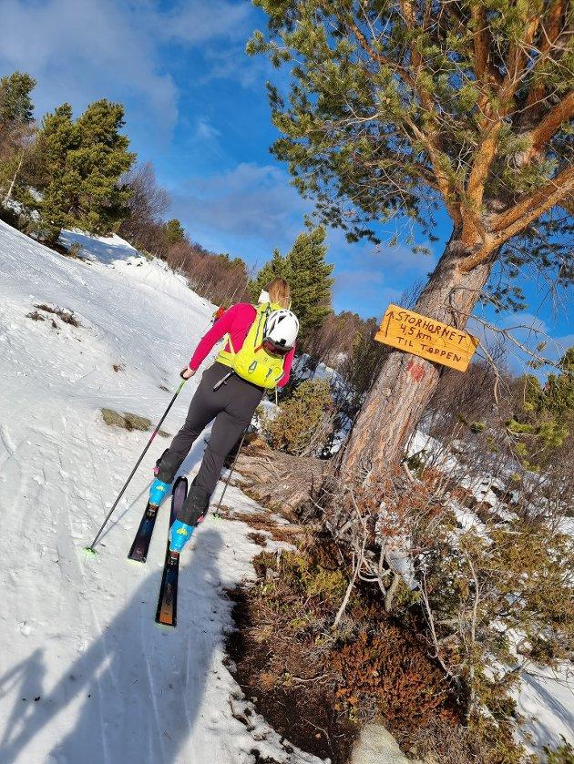 Lars Henning Grøtting og Ine Stangvik (hånballkeperen til Molde elite) tok skiene fatt.