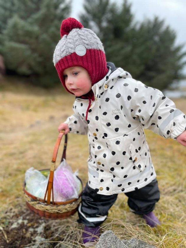 Kate Helén (3 år) på påskeegg-jakt på Smøla.