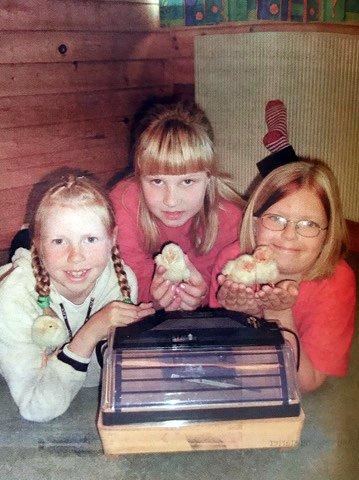 Tredjeklassingene på Haga skole har fått en rugekasse i klasserommet. Nå har det kommet fire kyllinger! Fra venstre: Linda Gran, Bertine Skjørdal og Trine Steiro.