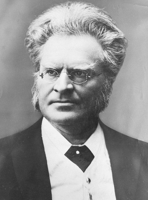 Forfatteren: Bjørnstjerne Bjørnson var først og fremst en uredd talsmann for undertrykte.Scanpix FOTO: NTB / SCANPIX NTB scanpix