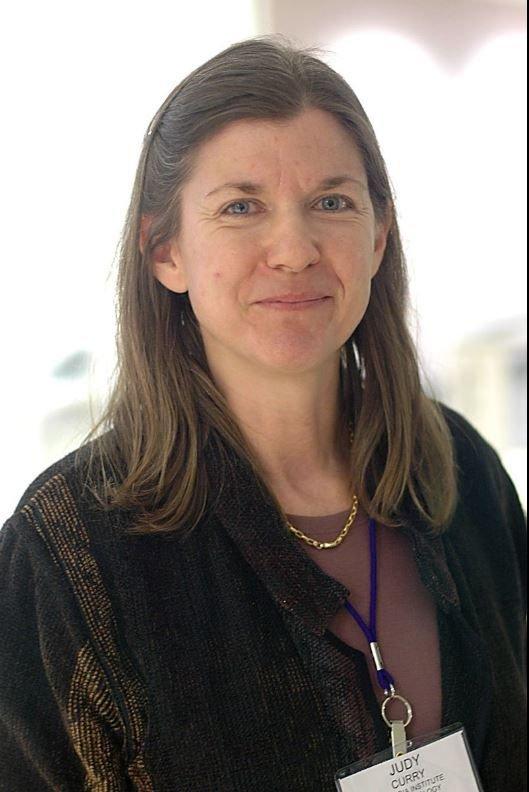 Da klimaforskeren Judith Curry satte seg inn i detaljene bak Climategate-avsløringene, innså hun at Klimapanelets påstander for det meste er politisk propaganda.