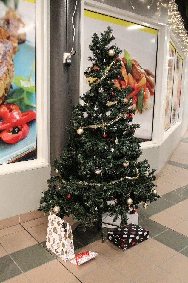 Juletre på plass hos Sjøsiden.