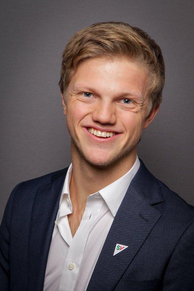 Balder Alvær Olafsen, fylkestingsrepresentant
