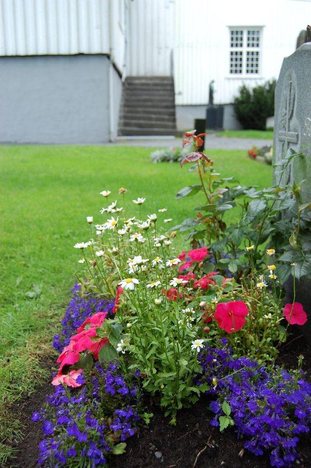 Blomster på Sandar