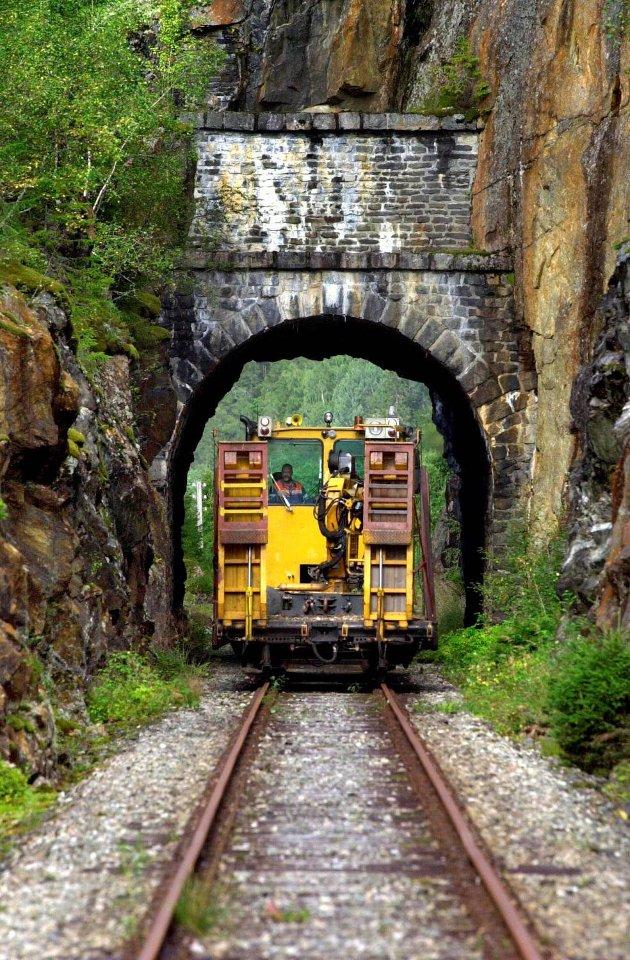 Magne Rønning mener at Namsosbanen kan benyttes til godstrafikk.