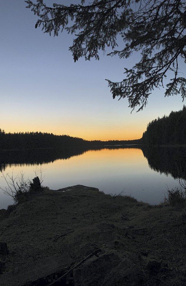 Det er bare et ord som kan beskrive stemningen ved Ellingsjøen etter solnedgang: Magisk! Alle foto: Trine Kjus