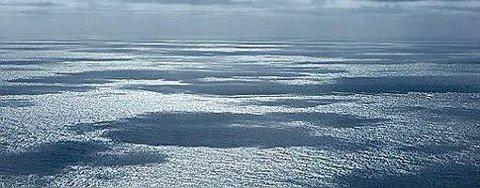 Stockman-feltet i Barentshavet.