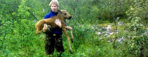 Bård Eilert Hansen fanget elgen med bare hendene. Legg merke til den skadde venstrefoten.