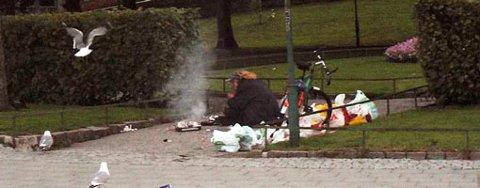 Ved hjelp av brødsmuler lokket mannen til seg måker, drepte dem og startet grillingen.
