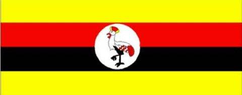 Herrens motstandshær (LRA) har vært i konflikt med Ugandas regjering i 20 år.