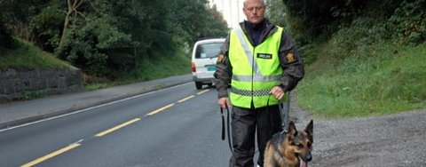 HUNDESØK: Hundepatruljer ble brukt i søket etter den savnede.
