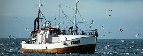 Vågan-ordføreren vil stoppe vinterfisket i Vesterålen for å verne kysttorsk.