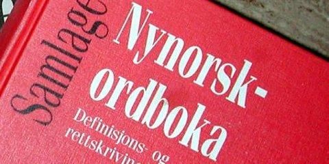 Hver femte grunnskolelev i Oppland har nynorsk som målform.
