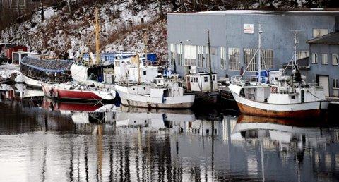 FLERE: Etter det TA kjenner til var det her ved Elvestad, hvor det i dag ligger flere båter av ulik kvalitet, at den 70 fot store båten lå lenge før den ble slept ut på Langesundsbukta og sank.