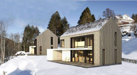 Arkitekt Anne Marie Grimsrud i Rambøll vil bygge to eneboliger med passivhusstandard og fokus på materialbruk, inneklima og energibesparelse i Meland.