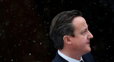 Den britiske statsministeren, David Cameron, utenfor nummer 10 Downing street i London (18.01.2013).