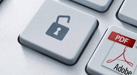 Eksperter varsler om Adobe-sikkerhetshull hos både Windows og Mac.