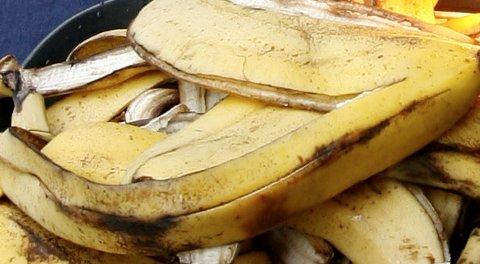 Noen kaster bananskall på jevnlig basis i en rundkjøring ved Haakonsvern. - Vedkommende må være utrolig glad i bananer, sier Per Kvinge til BA (illustrasjonsfoto).
