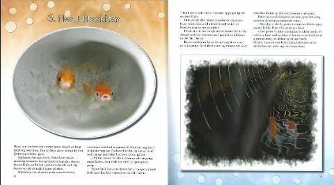 MONTASJE: Fiskene er montert inn i bildene i etterkant, blant annet oppi en toalettskål og i kloakken.FAKSIMILE FRA BOKEN