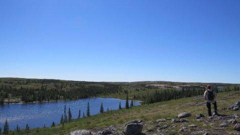 """Utsikt over Helges dal. Dette var """"motorveien"""" for indianerene mellom Pikes Portages ved Store Slavesjø og jaktmarkene inne ve Whitefisg Lake, Thelons kilder. Ferden gikk neppe nede i dalen, men på nord og sørsiden, da det er der plan og fin tundra liketil Snowdrifts nordre arm. Derfra bar det opp på tundraen liketil nordsiden av Sandy Lake. Foto: Christian Engelschiøn"""