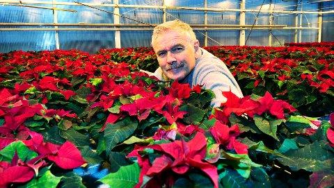 Få har vært med på å dele ut flere julestjerner enn Tidens Kravs fotograf Bjørn Hansen. Også i år vil vi hedre nordmøringer med en blomsterhilsen før jul.