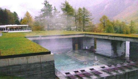 BADEMULIGHETER: Skogsbadet vil fungere som et badeland, som folk for eksempel kan besøke i helgene, sier Håkon Ø. Schiong. Illustrasjon: Snøhetta