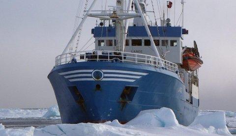 FANGSTSKUTE: Norsk Polarinstitutts forskningsskip «Lance» ble opprinnelig bygd som ei fangsskute. Den illustrere dermed det nære samarbeidet som har vært mellom ishavsfangst og norsk polarforskning. Foto: Sebastian Gerland, Norsk Polarinstitutt.