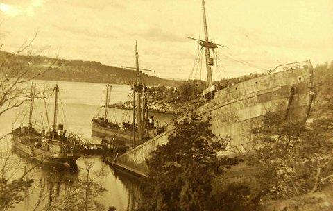 Donau på land ved Skipelle.