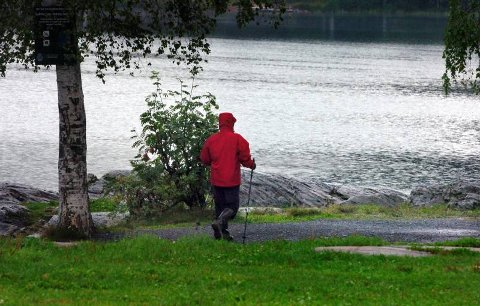 Tur gjør godt: En tur i marka er godt for både kropp og sinn. Så kan du velge om du vil ha lydbok, musikk eller naturen på øret. Foto: Terje Pedersen, ANB