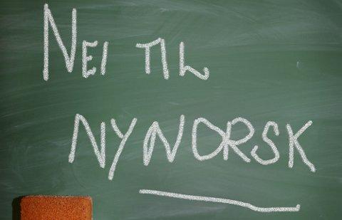 NYNORSK: Delte meninger. FOTO: SCANPIX
