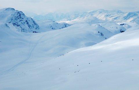 """Fire snøskuterførere på tur i et område utenfor godkjent løype ved Røyelen i Nordreisa. Den brede """"motorveien"""" til høyre i bildet er heller ingen godkjent løype."""