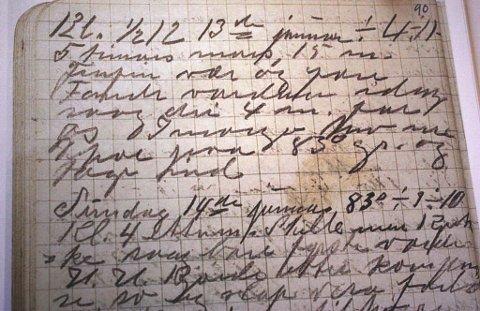 Dagbøkerne er skrevet med utydelig skrift, gjerne på gammelnorsk og dialekt.