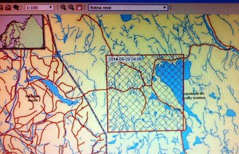PÅ NETT: 20. september var siste gang halsbåndet på alfatispa i Rotnareviret sendte ut signal. Da fra traktene ved Bograngen i Sverige.