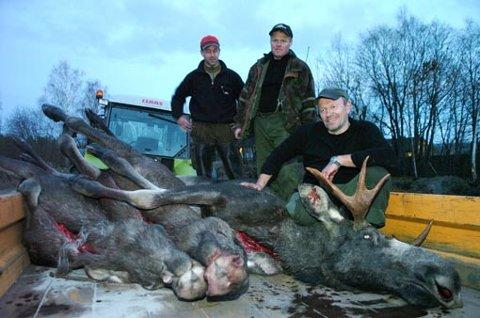 Rune Augdahl (til høyre) hadde gitt opp å få elg, og tok ikke med kamera siste jaktdag. Da skjøt han tre elger i løpet av 20 sekunder, etter signal fra Hans Jørgen Landstad (i midten) og Henrik Færden Petersen.