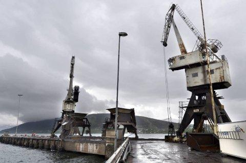 ØKNING: Fra 2010 til 2011 økte antall skipsanløp i Mo i Rana Havn fra 979 til 1015 og godsomsetninga økte med 150.000 tonn. Nå kommer ei ny kran på plass på Bulkterminalen. Foto: Øyvind Bratt
