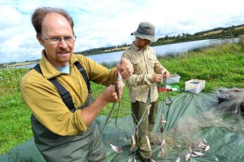 Thrond Hagen viser fram en mort. Karpefisken som nå skal fiskes vekk fra Østensjøvann. Ronny Steen fra Institutt for naturforvaltning sorterer fisk i bakgrunnen.