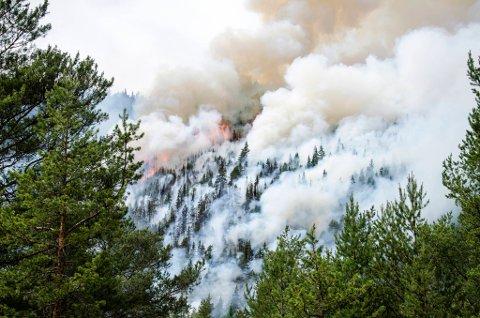 overvåkning: Fortsatt etterslukking og overvåkning av brannen på Sel som så slik ut fredag.