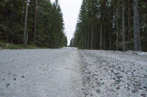 Fylkesvei: Sukkerveien, eller fylkesvei 241, går av fra fylkesvei 21 mellom Tangen og Vestmarka. Foto: Øyvind Henningsen