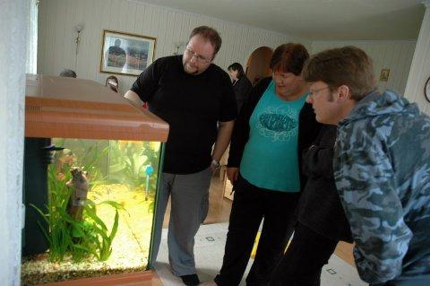 Medlemsmøte. Finn-Ove Johansen og Lisbeth Jakobsen fra Valnesfjord) diskuterer akvariefisk med Ronny Biagio fra Rognan. Foto: Gull H. Pedersen