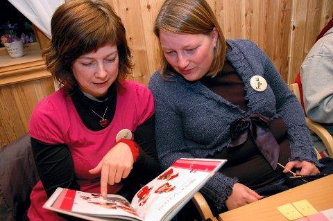 BLE INSPIRERT: Unni Myrset fra Brattvåg på Sunnmøre (t.v) har nylig gitt ut bok. Frøydis Nyheim fra Andøya lot seg inspirere.